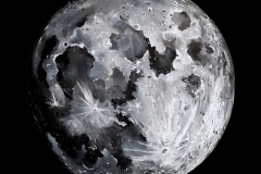 stefano-bove-moon-img-min