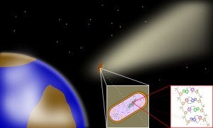 All about panspermia and news