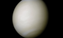 All about Venus and news